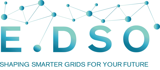 EDSO logo with strapline 1